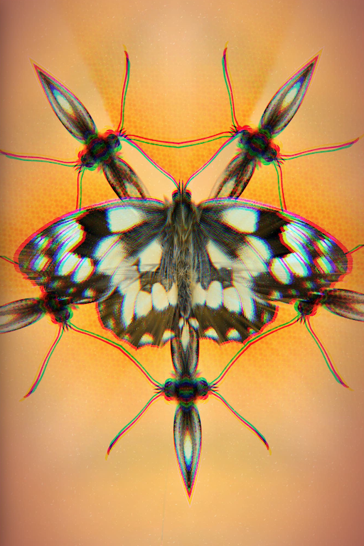 Surreal butterfly with kaleidoscoping, color aberration, and other effects