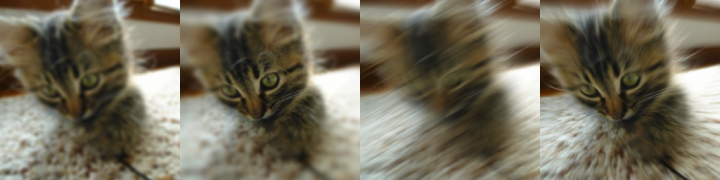 Screenshot of 4 different types of blur applied to the same image